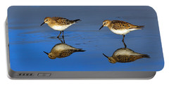 Juvenile White-rumped Sandpipers Portable Battery Charger