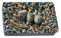 Killdeer Bird Eggs Portable Battery Charger by Jennie Marie Schell