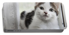 Kitten In The Window Portable Battery Charger by Jeannette Hunt