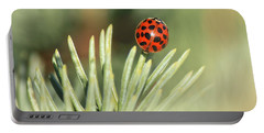 Portable Battery Charger featuring the photograph Lady Beetle On A Needle by Penny Meyers