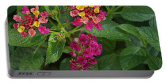 Portable Battery Charger featuring the photograph Lantana by Joseph Yarbrough