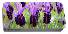 Lavenders Portable Battery Charger