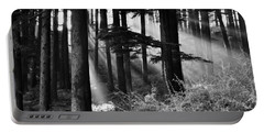 Portable Battery Charger featuring the photograph Light Through The Trees by Don Schwartz