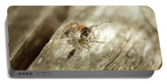 Portable Battery Charger featuring the photograph Little Jumper In Sepia by JD Grimes