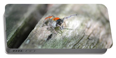 Portable Battery Charger featuring the photograph Little Jumper by JD Grimes