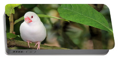 Portable Battery Charger featuring the photograph Little White Bird by Rosalie Scanlon