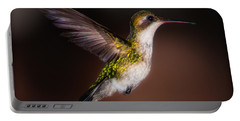 Lone Hummingbird Portable Battery Charger