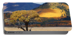 Portable Battery Charger featuring the photograph Lone Tree by Jim Garrison