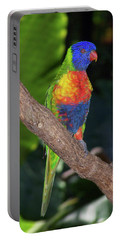 Lorikeet Portable Battery Charger