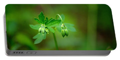 Portable Battery Charger featuring the photograph Lost But Not Forgotten by Vicki Pelham