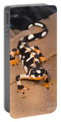 Luristan Newt Portable Battery Charger