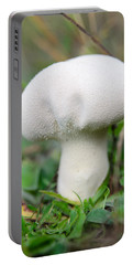 Lycoperdon Portable Battery Charger