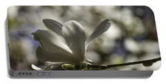Magnolia X Loebneri  Merrill. Portable Battery Charger