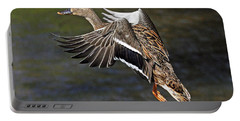 Mallard Landing Portable Battery Charger by Rodney Campbell