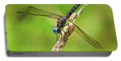 Portable Battery Charger featuring the photograph Meadowhawk by Rodney Campbell
