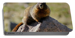 Morning Marmot Portable Battery Charger