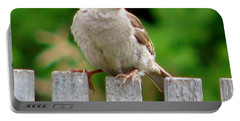 Morning Visitor Portable Battery Charger by Rory Sagner