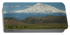 Mount Shasta Portable Battery Charger