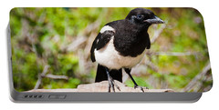 Portable Battery Charger featuring the photograph Mr. Magpie by Cheryl Baxter