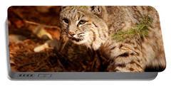 Mr. Whiskers Portable Battery Charger