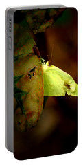 Mystical World Portable Battery Charger