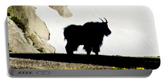 Portable Battery Charger featuring the photograph Nature's Silhouette by Colleen Coccia