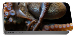 Octopus 1  Portable Battery Charger