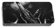 Portable Battery Charger featuring the photograph Old Tree by David Gleeson