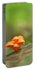 Portable Battery Charger featuring the photograph Orange Mushrooms by JD Grimes