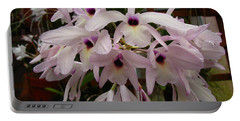 Portable Battery Charger featuring the photograph Orchids Beauty by Donna Brown