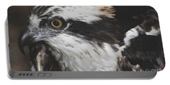 Portable Battery Charger featuring the photograph Osprey by Lydia Holly