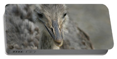 Portable Battery Charger featuring the photograph Ostrich by Heidi Poulin