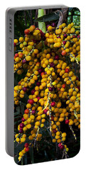 Portable Battery Charger featuring the photograph Palm Seeds Baroque by Steven Sparks