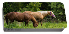 Pasture Time Portable Battery Charger by Doug Long