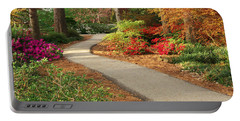 Peaceful Path Portable Battery Charger