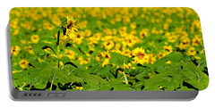 Portable Battery Charger featuring the photograph Peeking Above  Sea Of Yellow by Colleen Coccia