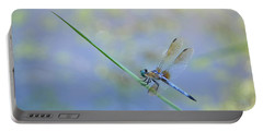 Portable Battery Charger featuring the photograph Perched Dragon by JD Grimes