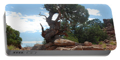 Pine Tree By The Canyon Portable Battery Charger by Dany Lison
