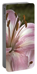 Pink Asiatic Lily Portable Battery Charger