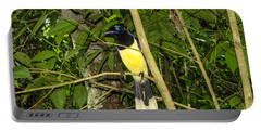 Portable Battery Charger featuring the photograph Plush-crested Jay by David Gleeson