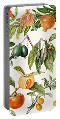 Pomegranate And Other Fruit Portable Battery Charger