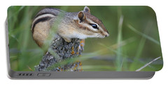 Portable Battery Charger featuring the photograph Portrait Of A Chipmunk by Penny Meyers