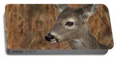 Portrait Of  Browsing Deer Portable Battery Charger