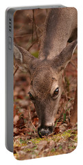 Portrait Of  Browsing Deer Two Portable Battery Charger