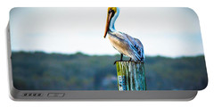 Portable Battery Charger featuring the photograph Posing Pelican by Shannon Harrington