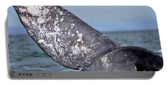 Portable Battery Charger featuring the photograph Powerful Fluke by Don Schwartz