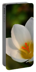 Pretty White Crocus Portable Battery Charger