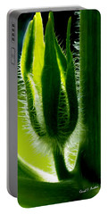 Prickly Affairs Portable Battery Charger