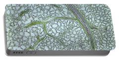 Privet Leaf Vascularization Portable Battery Charger