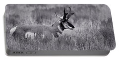 Portable Battery Charger featuring the photograph Pronghorn  by Eric Tressler